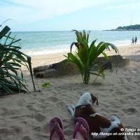 Caroline - Tangalle (Sri Lanka) - tongs-et-srilanka.blogspot.fr